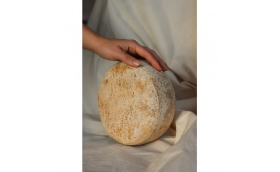 El arte de elaborar quesos artesanos: Quesería La Torre.